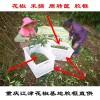 重庆花椒筐厂家直销鲜花椒塑料筐花椒筐大号可装40斤四川贵州