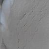 吡啶硫酮钠粉末 SPT 3811-73-2