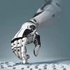 2021第一届中国国际机器智能嘉年华